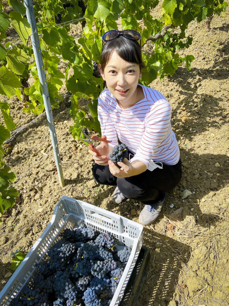 Yuri Shima is a Champagne expert based in the San Francisco Bay Area, originally from Japan.